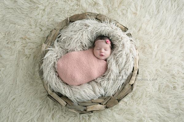 Lizzy McMillan Arizona Newborn Photographer Momento Studios Newborn Girl Phoenix Arizona Mesa Arizona-15