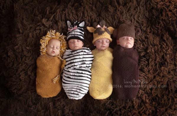 Momento Studios Arizona Newborn Photographer Newbown Photography Mesa Arizona Lizzy McMillan Gilbert Arizona Scottsdale Arizona Tempe Arizona Twins Triplets Multiples Whisperer Newborn Whisperer-002
